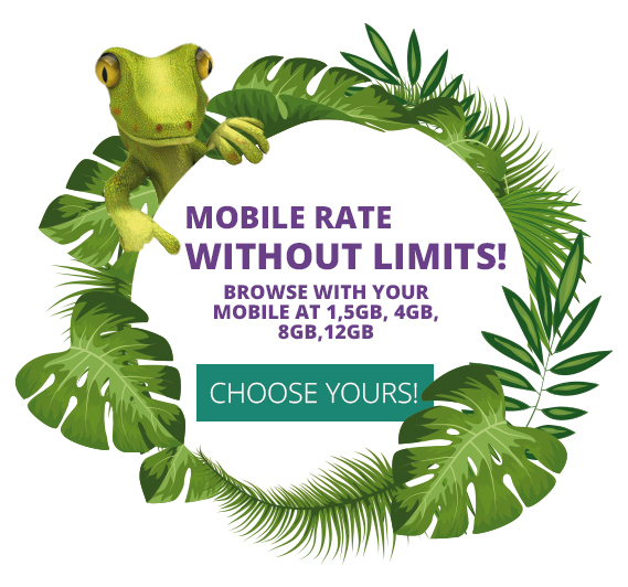 mobile rate